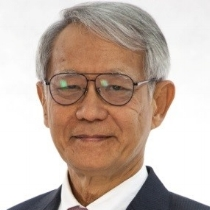 HE Yongyuth Yuthavong   Roll Back Malaria Partnership, former Deputy Prime Minister of Thailand