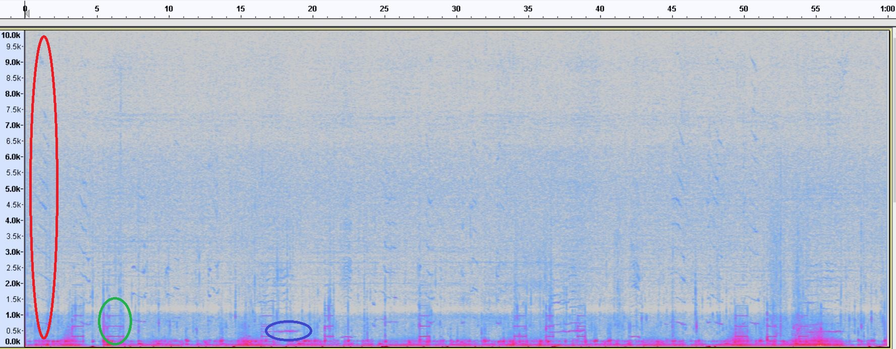 Spectrogram of humpback whale WAV file (0-10kHz): a graphical representation of an mp3 audio. The X-axis is time (seconds) and the Y-axis is frequency (Hertz).