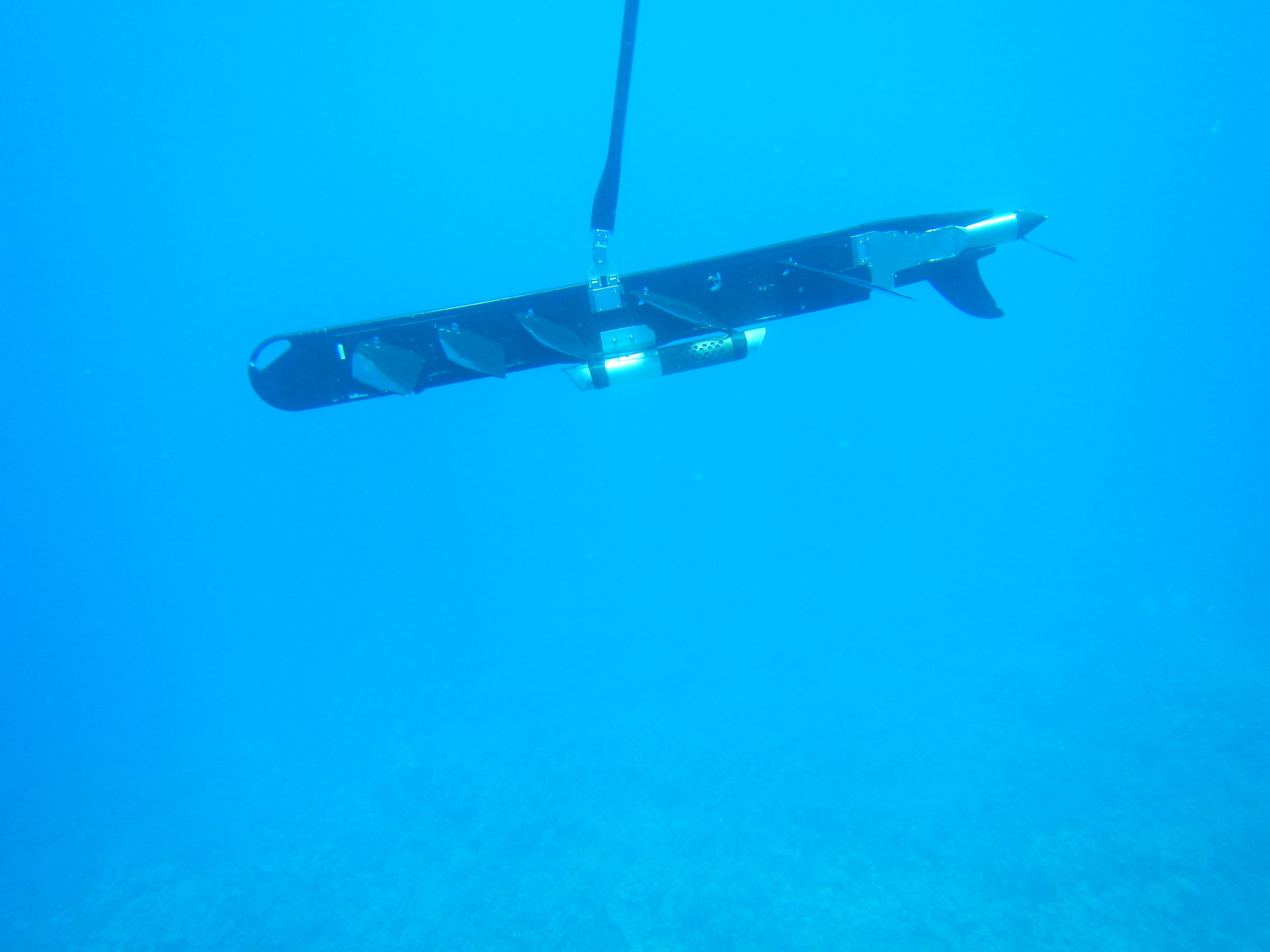 Image 3. Hydrophone mounted to center of sub