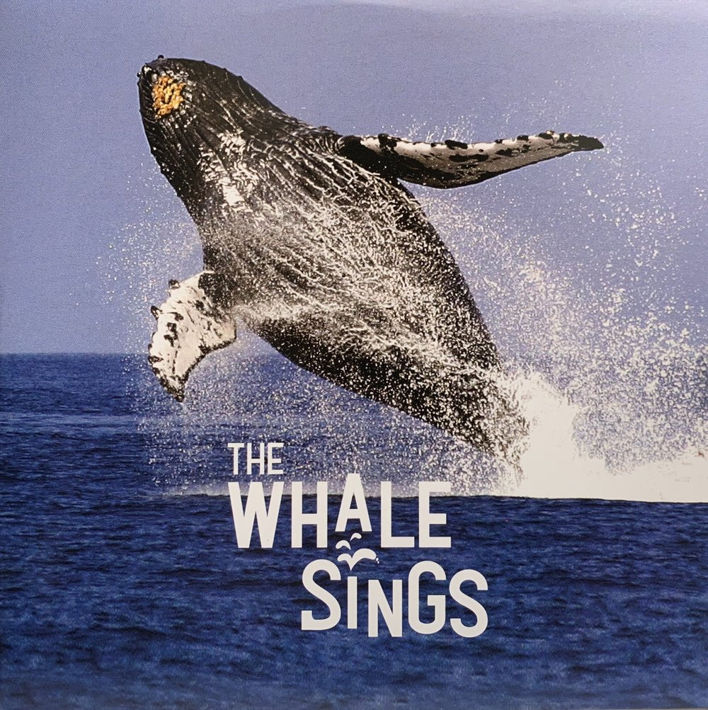 """"""" """"The Whale Sings"""", our documentary by David Hoffman about Jupiter Research Foundation's start"""
