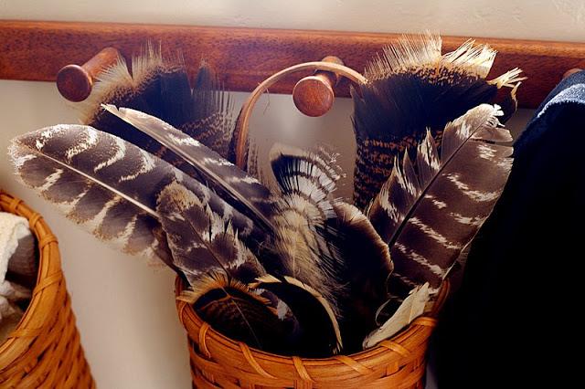 IH feathers.jpg