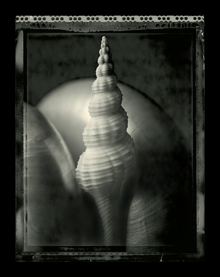 CAM blog shell 2.jpg