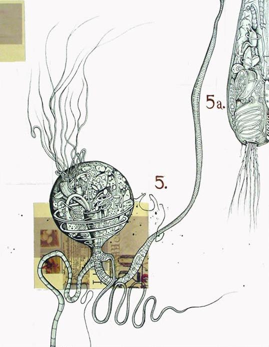 Sporozite Nemaphage + Parasitic Bacterium v.13