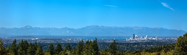 Listing ____________ SOLD Price $1,925,000 Bellevue, WA