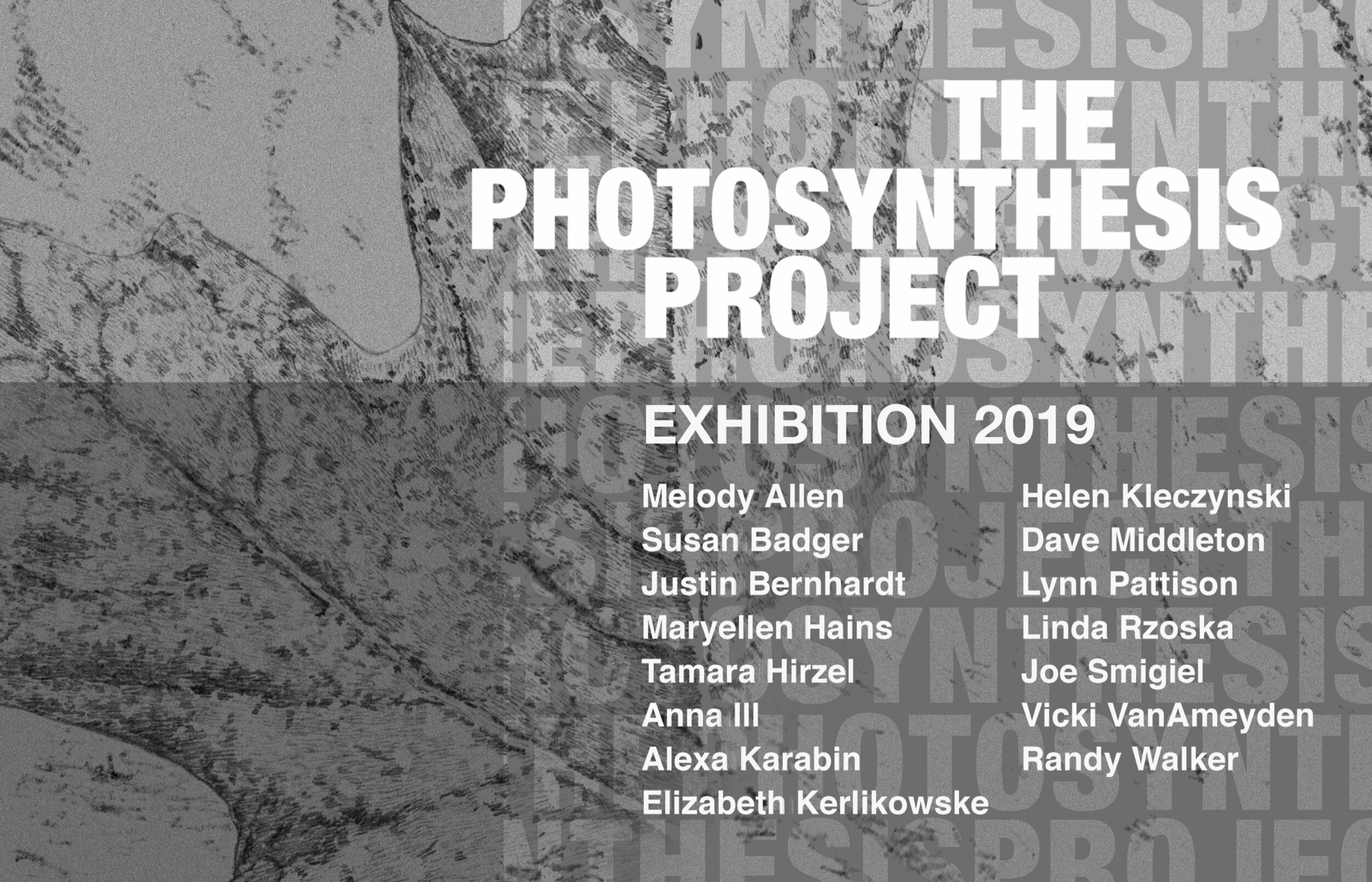 Photosynthesis Exhibition Card1.jpg