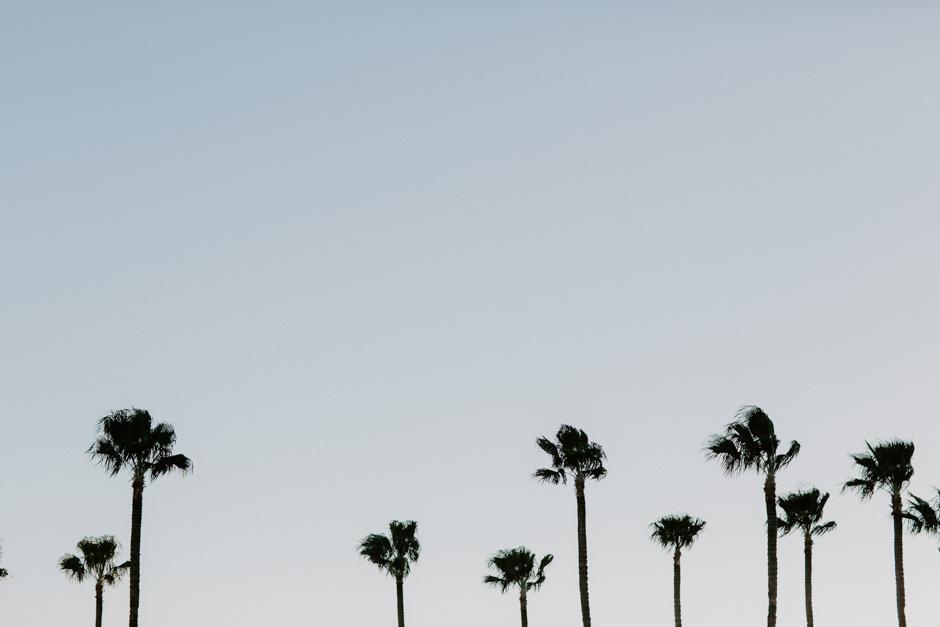 California-Wedding-Photographer-AaronAmanda0496.jpg