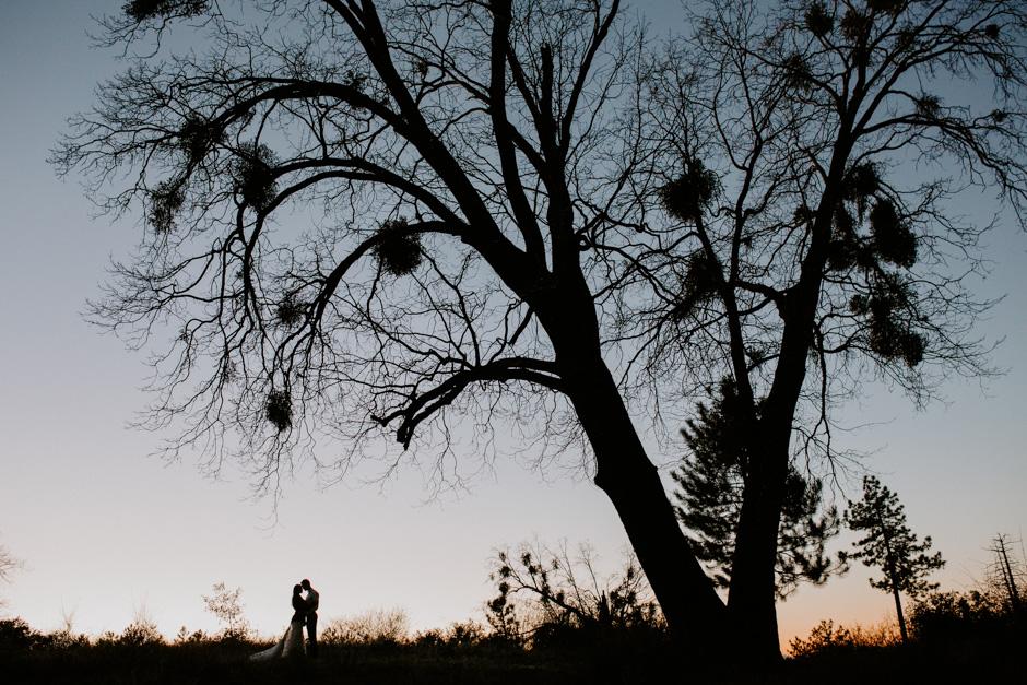 California-Wedding-Photographer-AaronAmanda1269.jpg