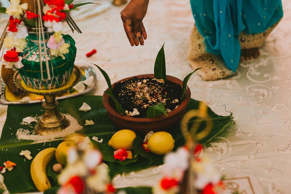 SaraniyaVishnu0497c.jpg