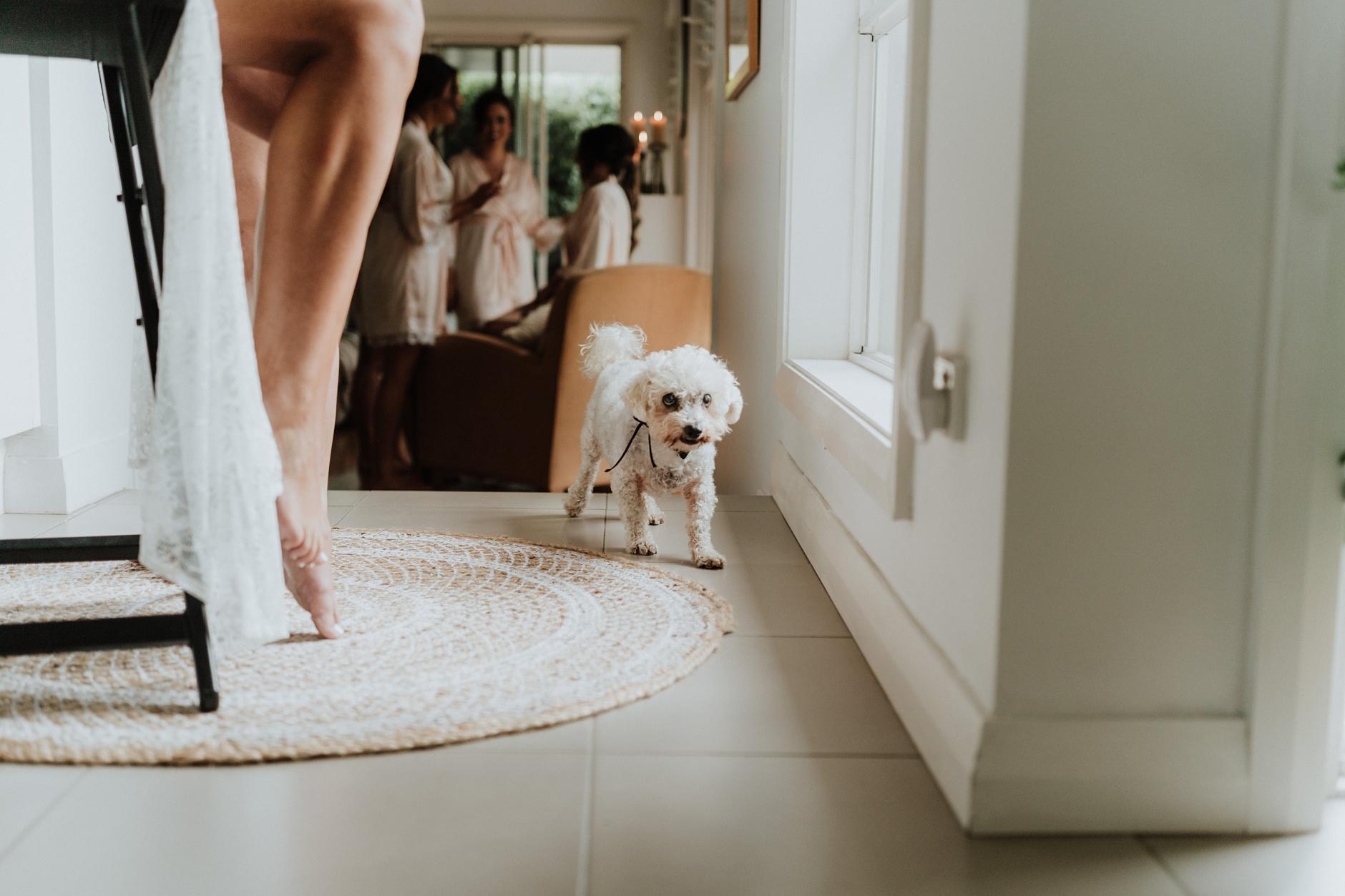 Sydney-Wedding-Photographer_0071.jpg