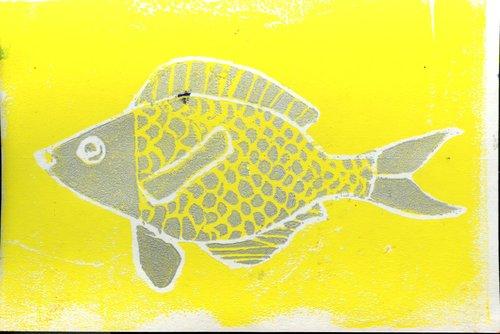 Callie+Fish.jpg