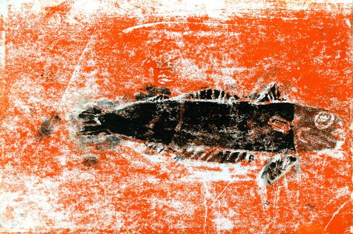 Marcus+Fish.jpg