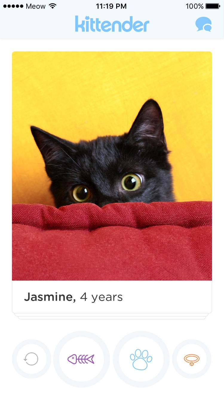 screen_jasmine.jpg