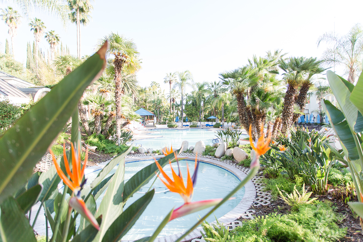 Glen Ivy Hot Springs is an ideal destination to unwind and relax with friends, family or solo.