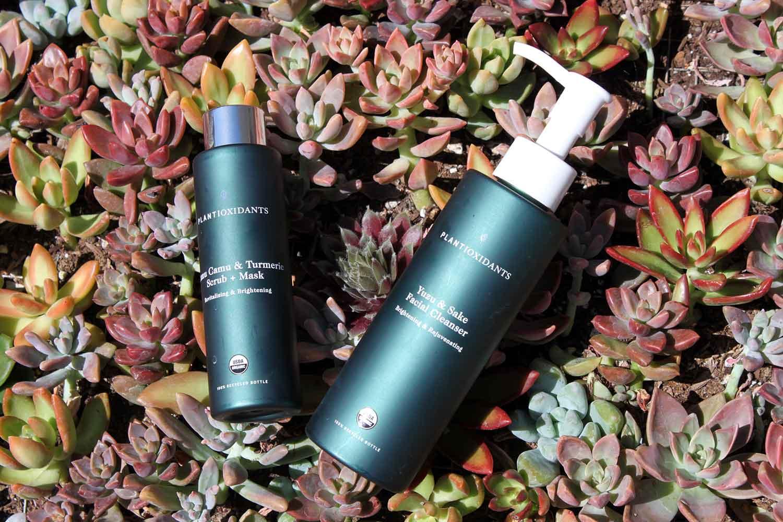 Plantioxidants Rejuvenating Cleanser and Exfoliating & Brightening Treatment.