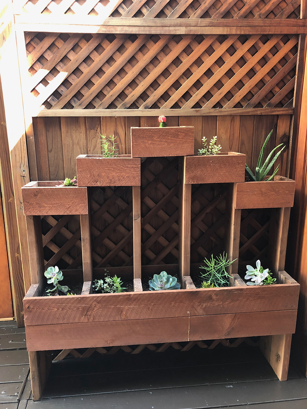 The outdoor patio includes a pretty succulent display!
