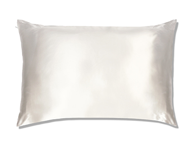 The Hollywood Silk Solution Silk Pillowcase ($45)