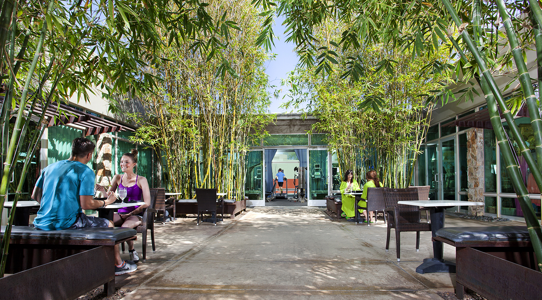 courtyard with bamboo.jpg