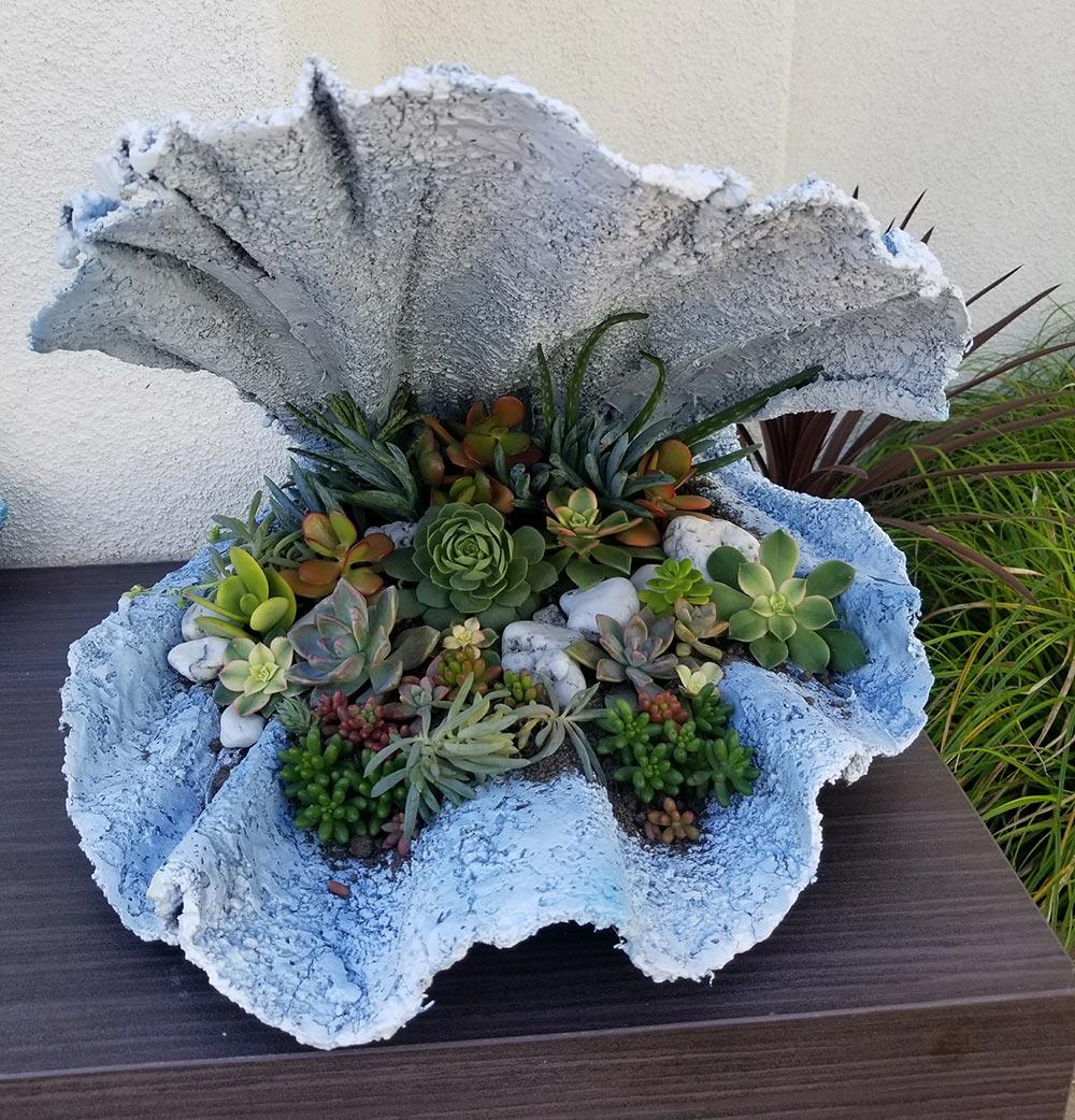 Sea-inspired succulent art in Drift Spa's garden.