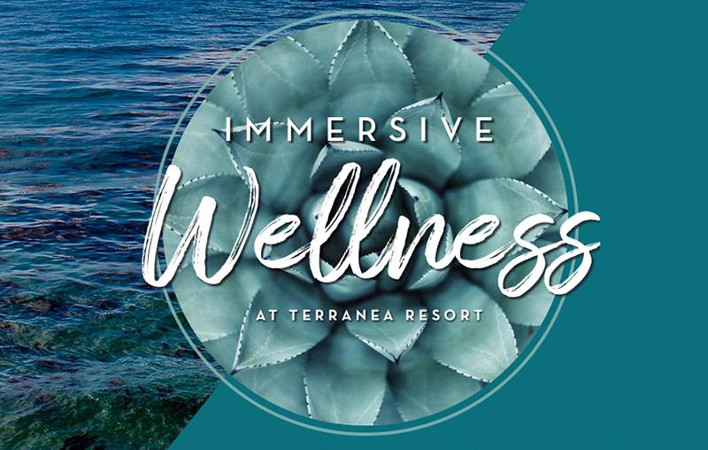 Immersive Wellness Logo.jpg