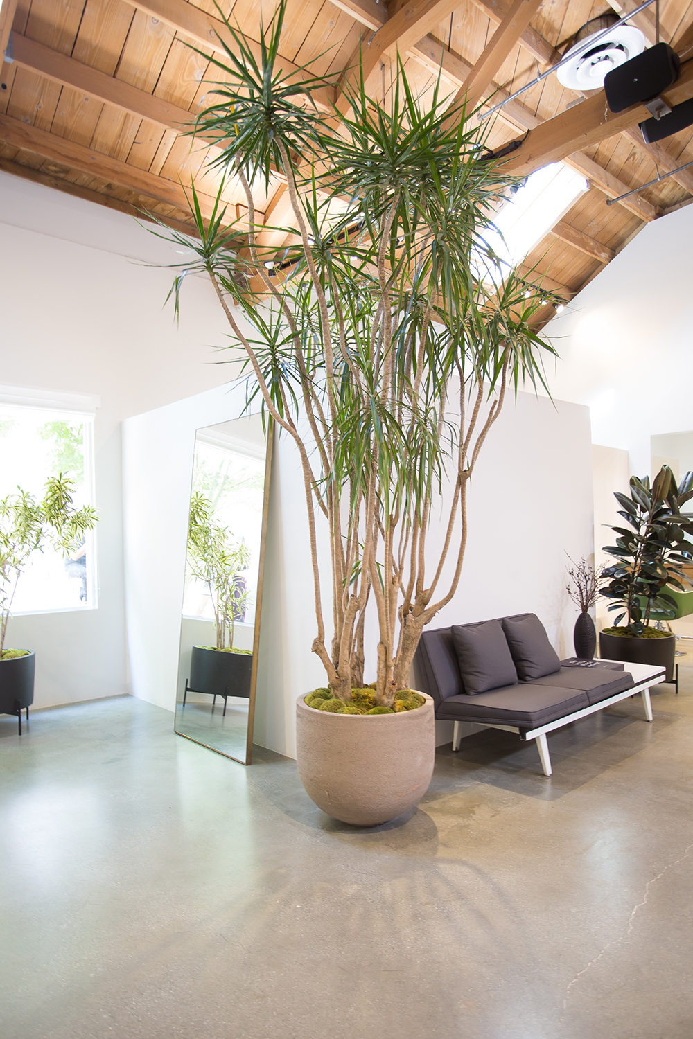 Loft 647 is a Green Circle Salon and goes to great lengths to reduce waste in the environment.