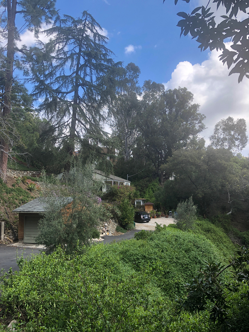 Poppy and Someday is a relaxing sanctuary located in the the Laurel Canyon neighborhood of Los Angeles.