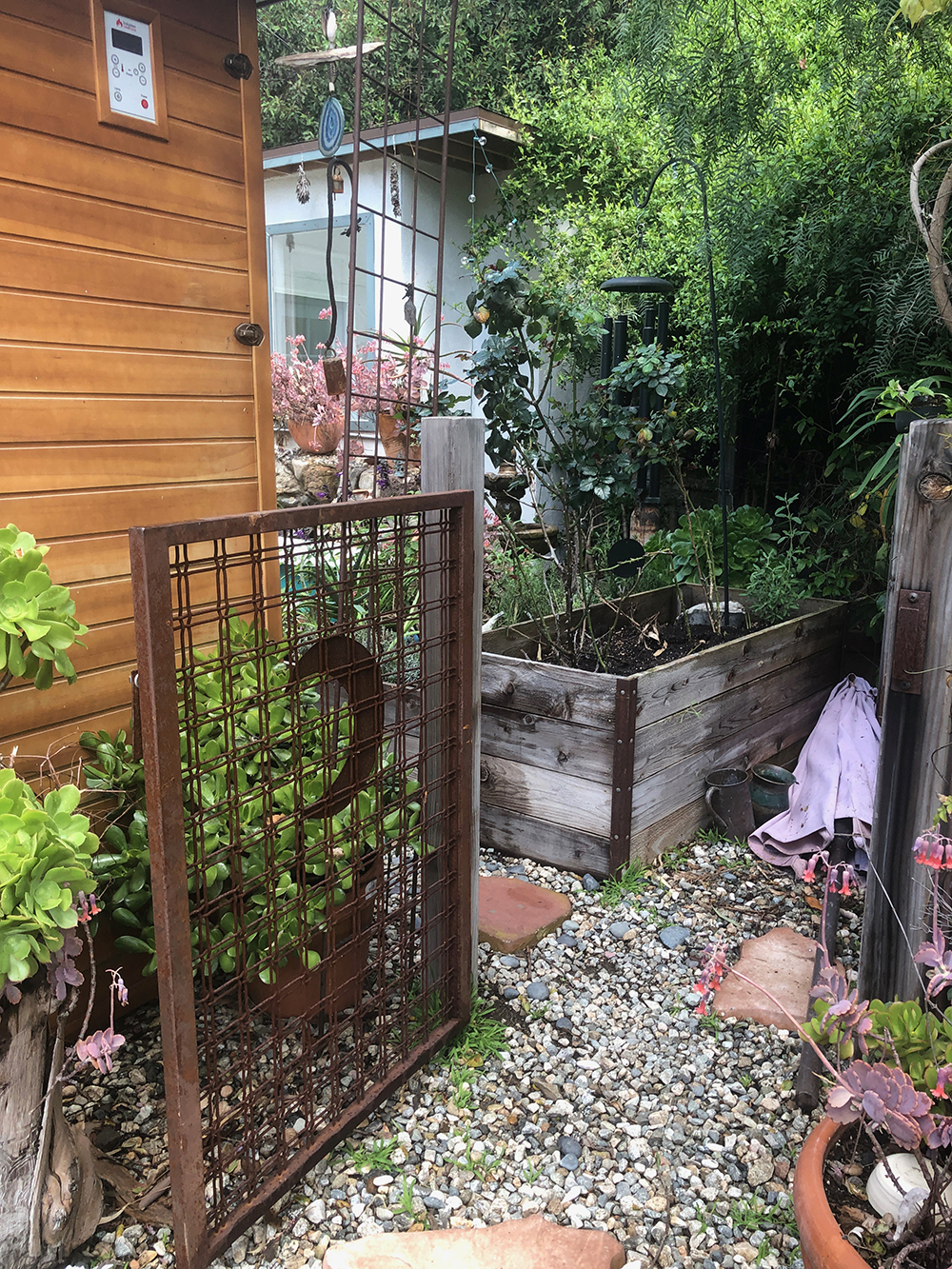 Jansen grows a variety of plants and herbs in the garden.