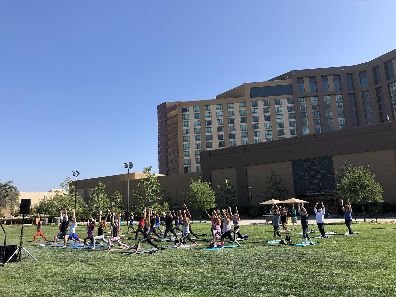 lawn yoga.jpg