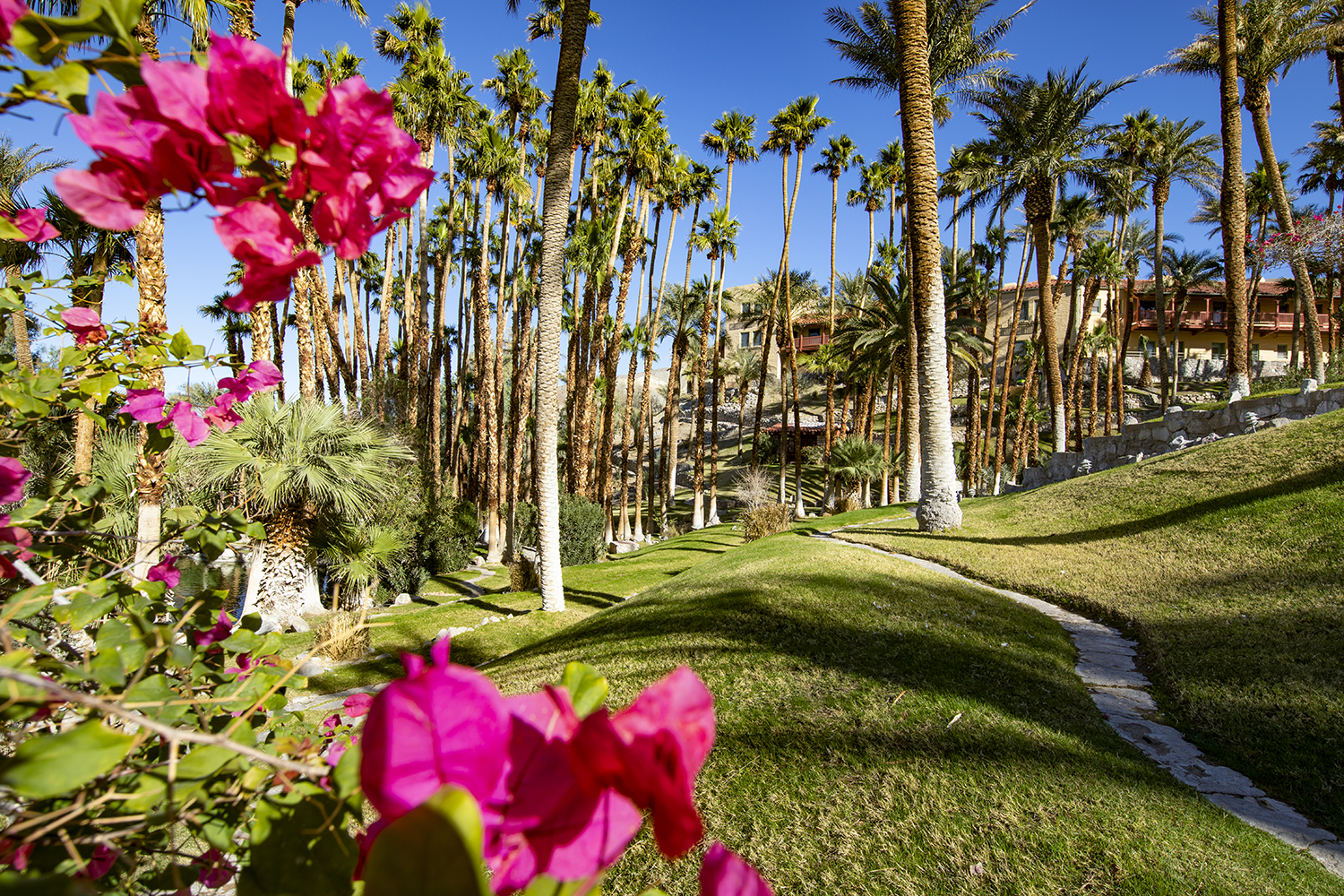 The beautiful gardens and grounds at The Oasis at Death Valley.
