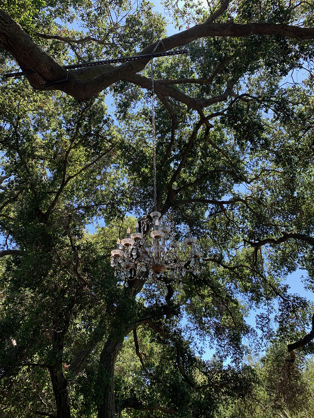 An outdoor chandelier hangs from a tree above.