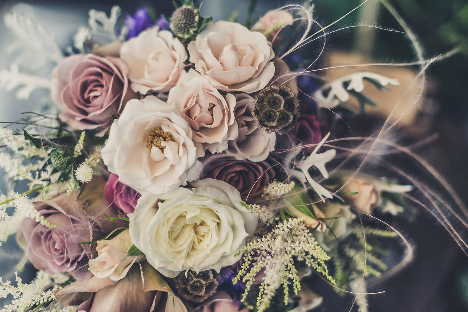 Flower reading is an ancient art that uses symbolism, intuition, and knowledge of flowers to interpret a message.