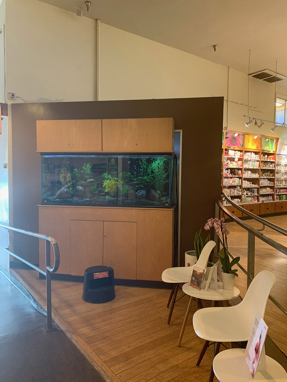 The waiting area includes a calming aquarium.