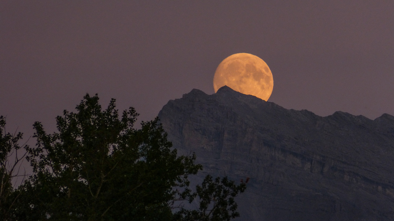 The Moon rules our emotions, the environments we thrive in, and the way the public views us.