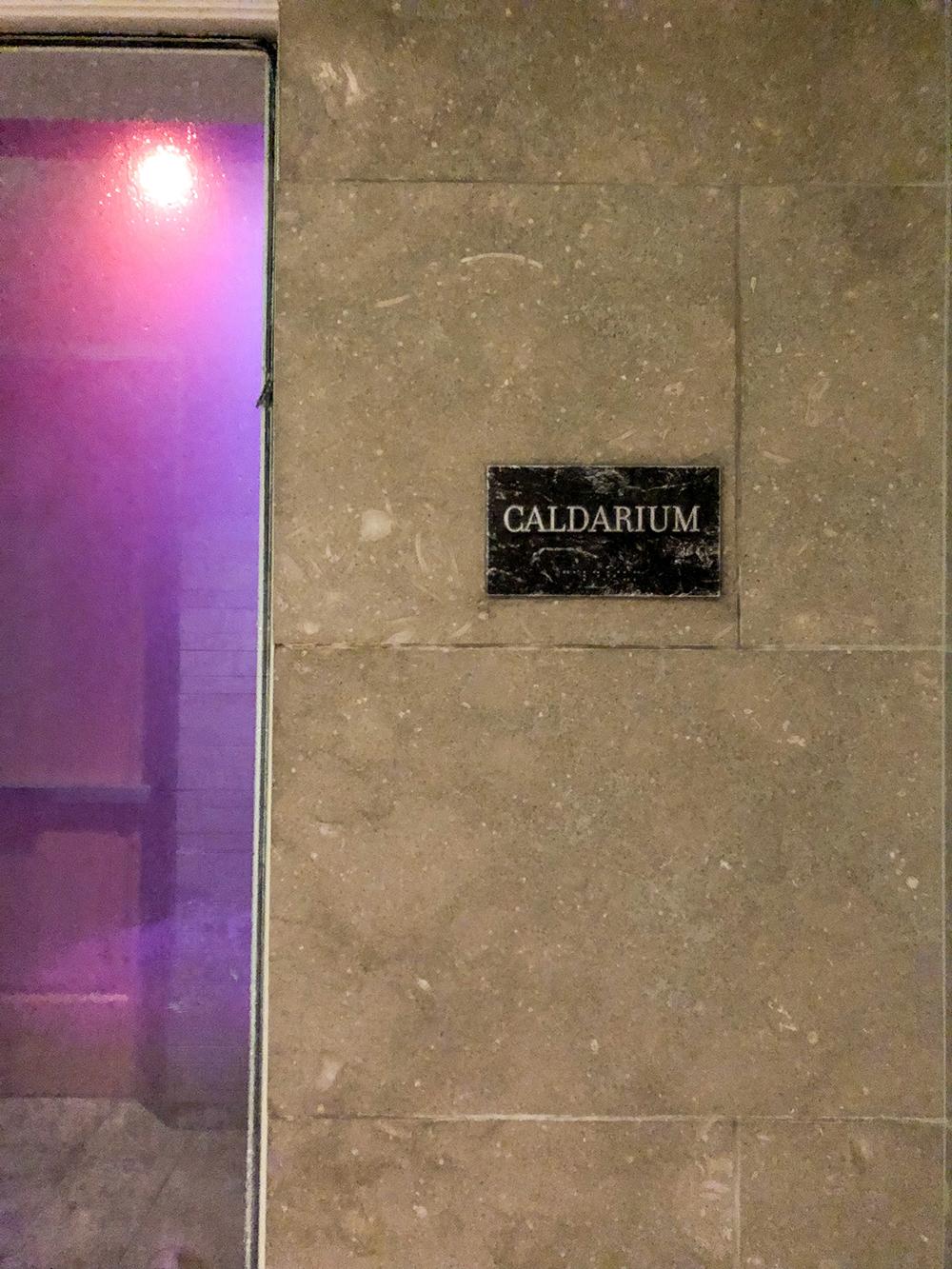 Caldarium purple light.jpg