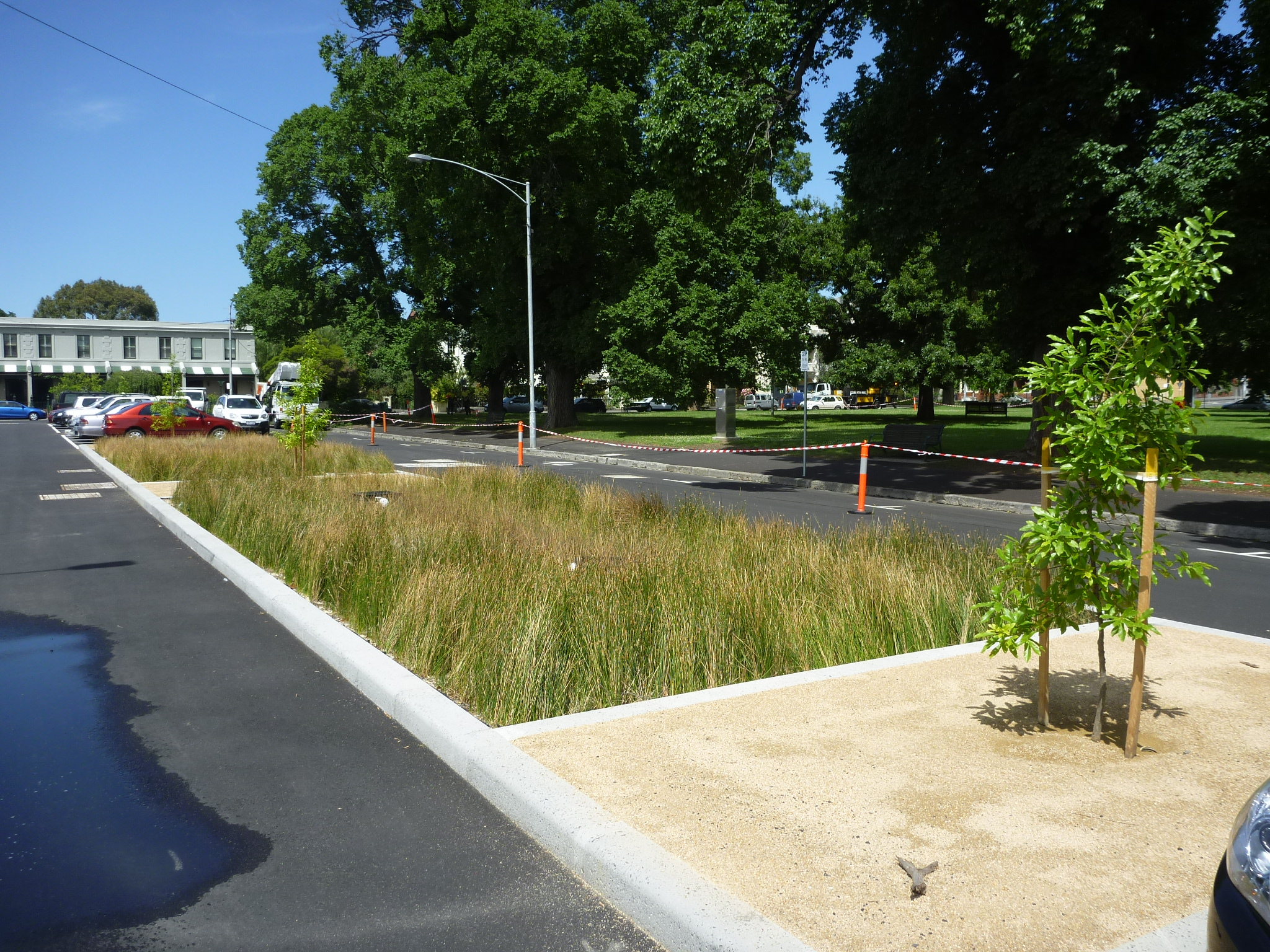 4. Darling st Completed project with Biofilta beds in the middle of the road.jpg
