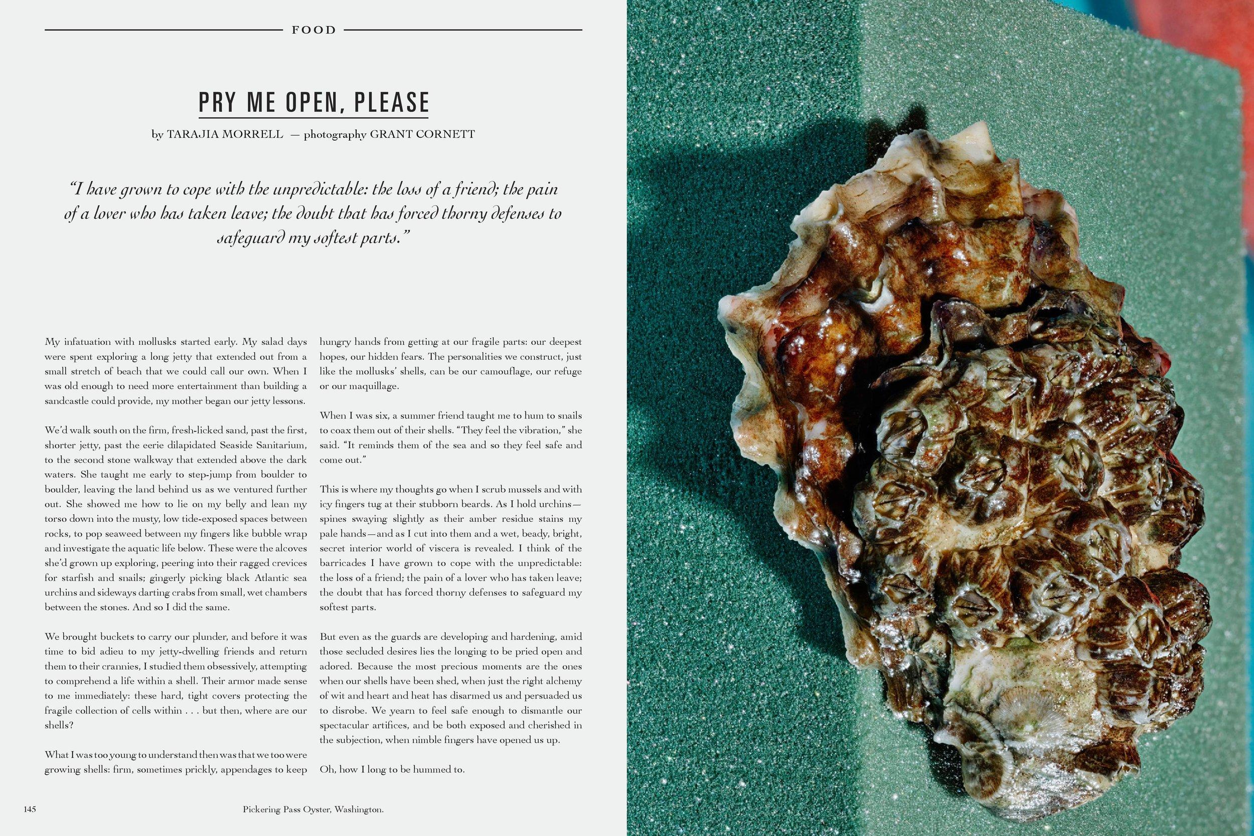 GREY SHELLS-page-001.jpg