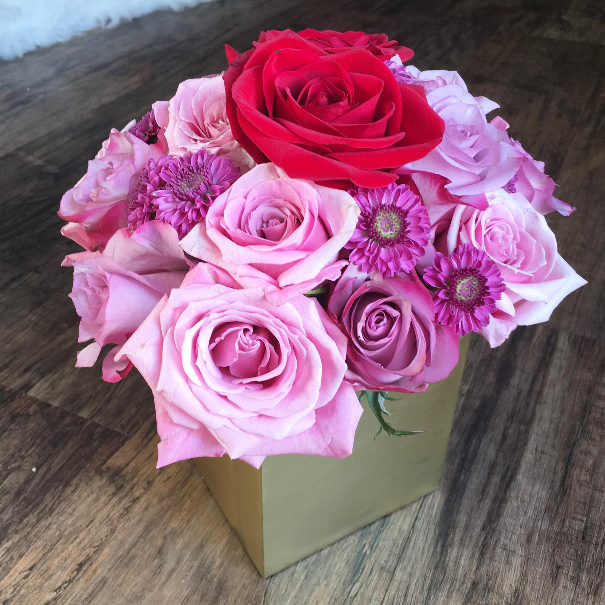 purple_red_pink_roses_mckenziechic2.jpg