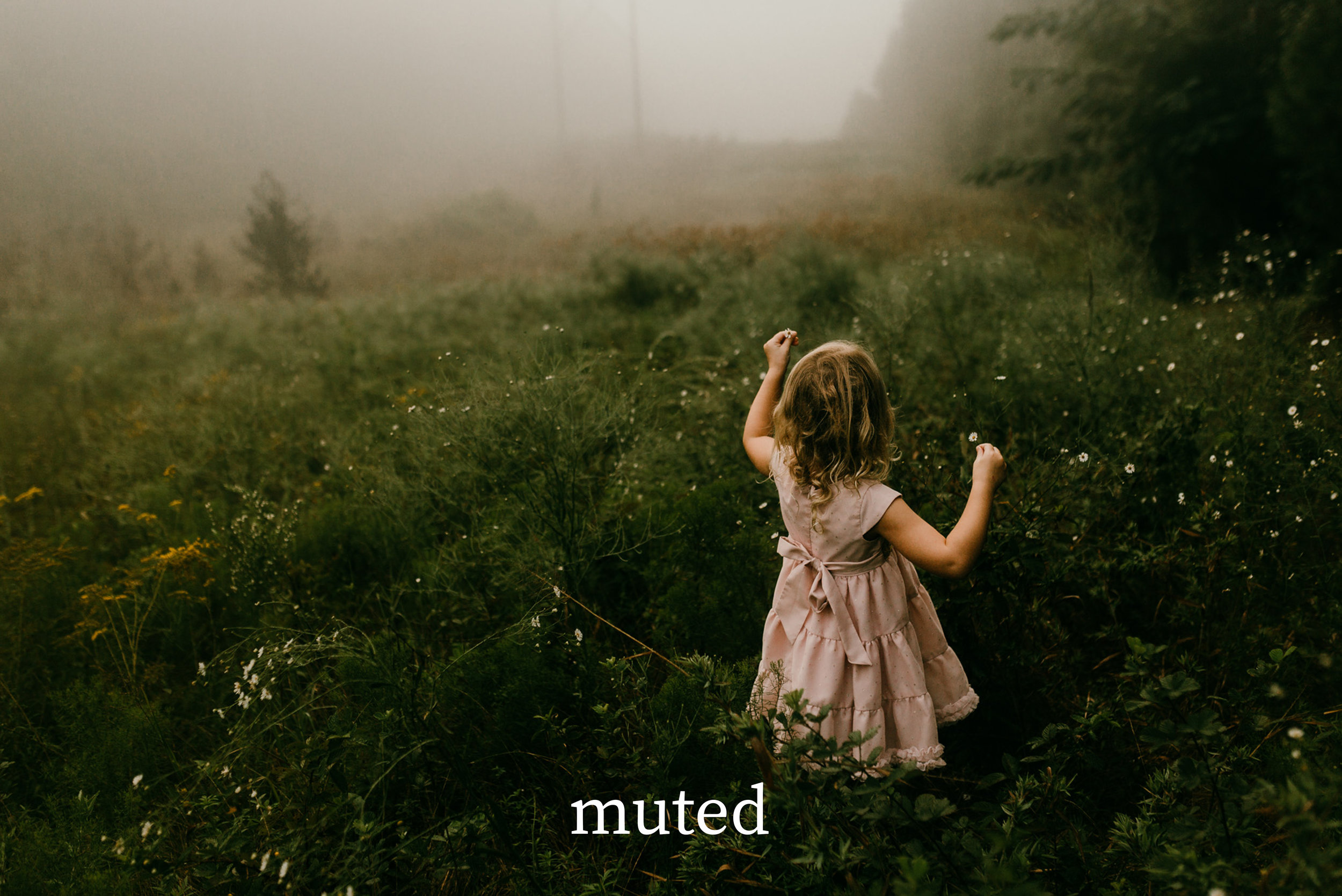 muted   - the ultimate film-esque effect: dreamy muted soft tones to draw out that emotive flare you've been searching for.