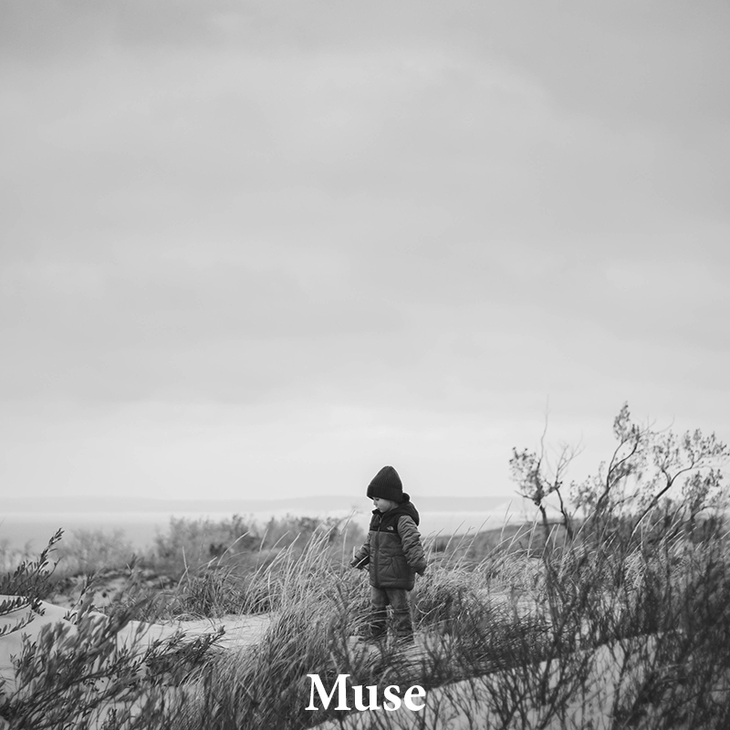 Muse: A classic & versatile treatment for any image