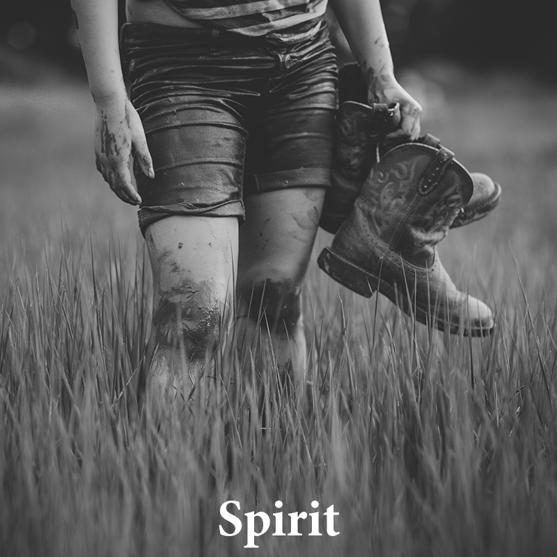 Spirit: Makes your image feel like a memory