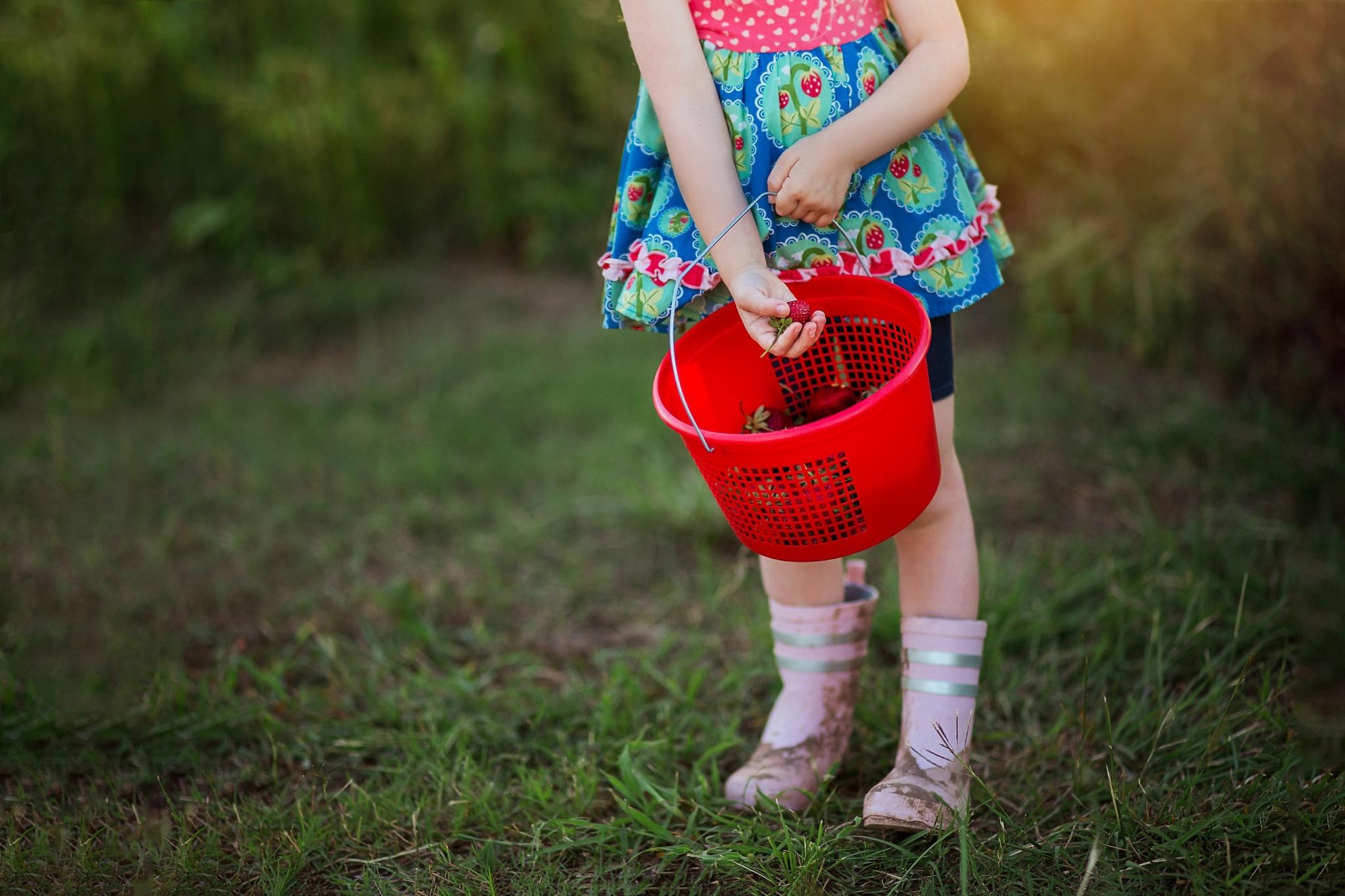 04Strawberry Farm_Libby Grohmann.jpg