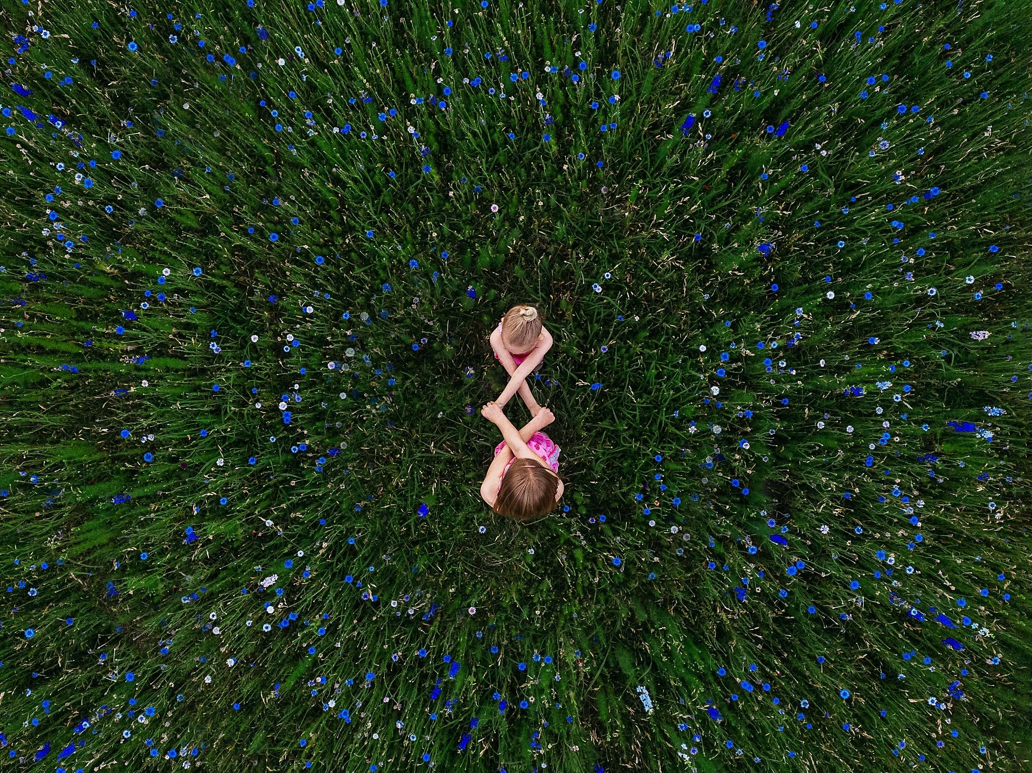 08Drone Flowers_Libby Grohmann.jpg