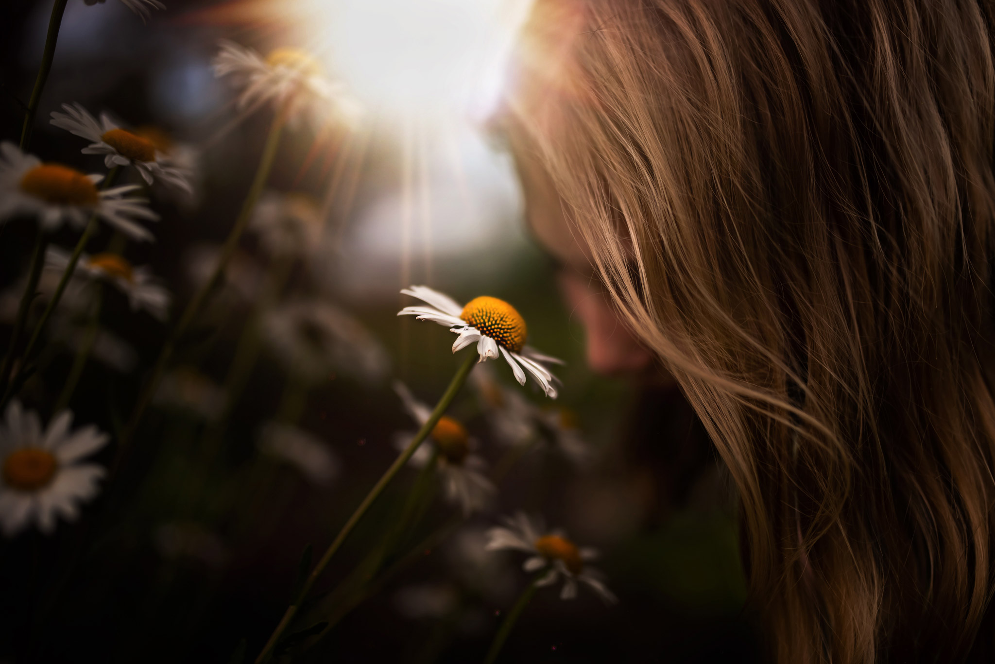 We decided to go out and capture nature's beauty (myself and my kids). I love this moment I caught of my daughter smelling the daisies. I even added a light overlay from Susan Brooksby (free if you sign up to be a Hello Storyteller member!) it was one of June's perks :)