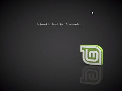 27-BootLinuxScreen0-400x300.jpg