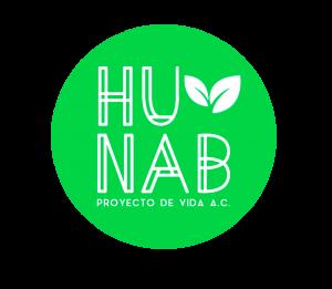 Hunab logo.png