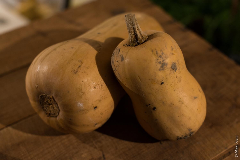 La butternut - a une chair jaune à jaune orangé, fine, beurrée et fondante comme de l'avocat. A la vapeur, en potage, purée, ou risotto !