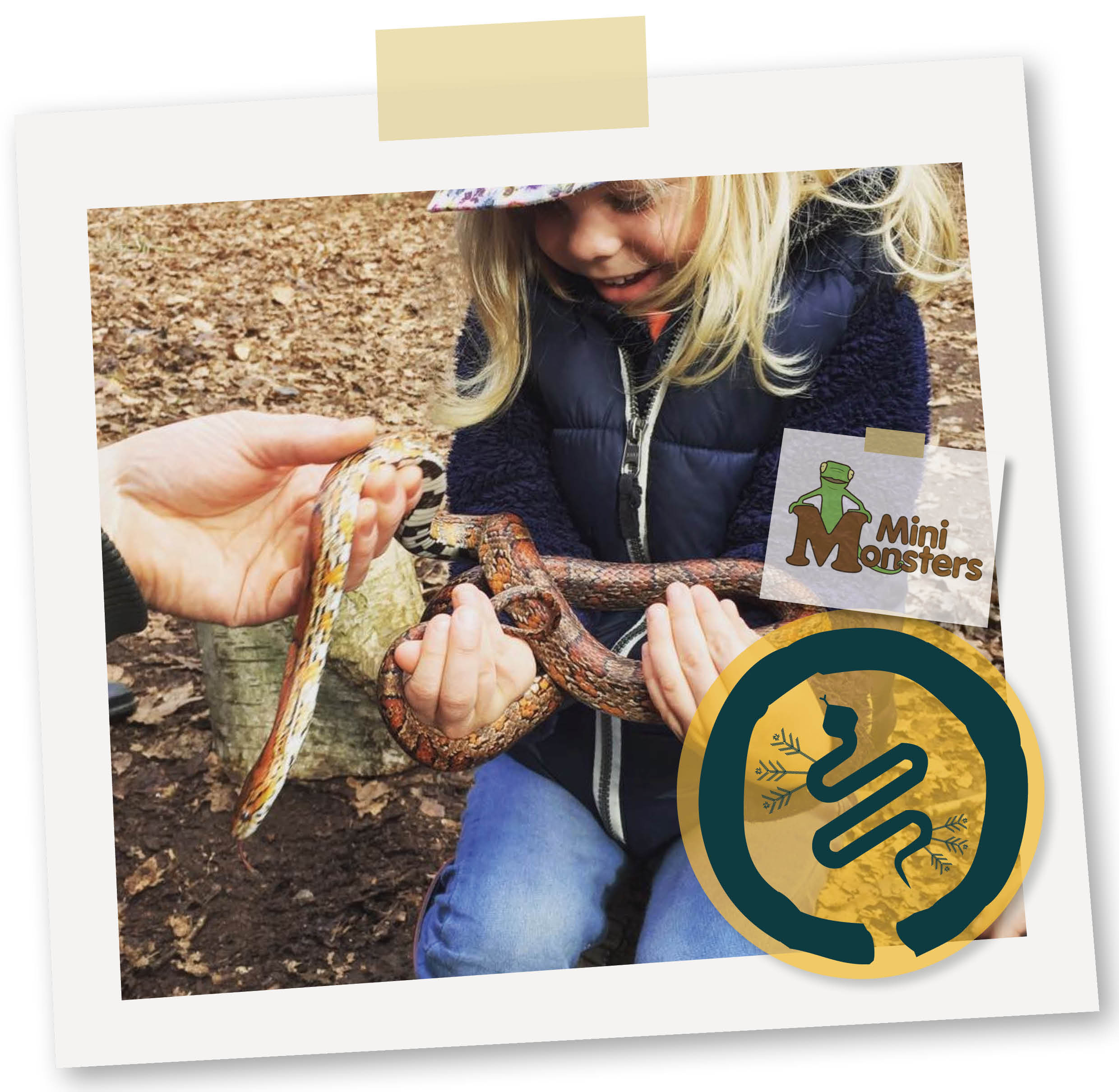 Mini Monsters - WITH THE MINI MONSTER TEAM...Meet Trinny the tarantula, make friends with a corn snake and stop Mildred the wiggly giant millipede from escaping! HAND'S ON LEARNING & PARTY FUN!2 hour partyPackages tailored for all ages£255 for up to 15 children(Available from EASTER - Sept only)