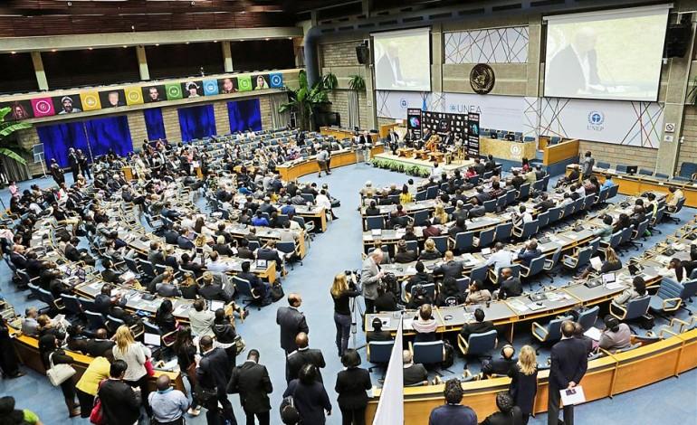 UN Pledge1.jpg