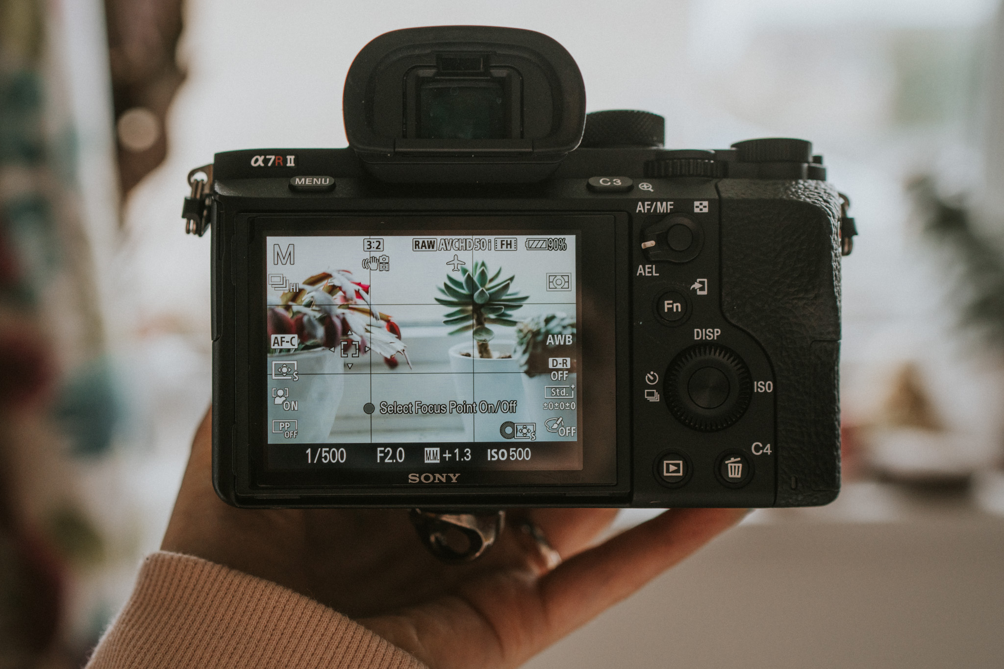 The electronic viewfinder (EVF)