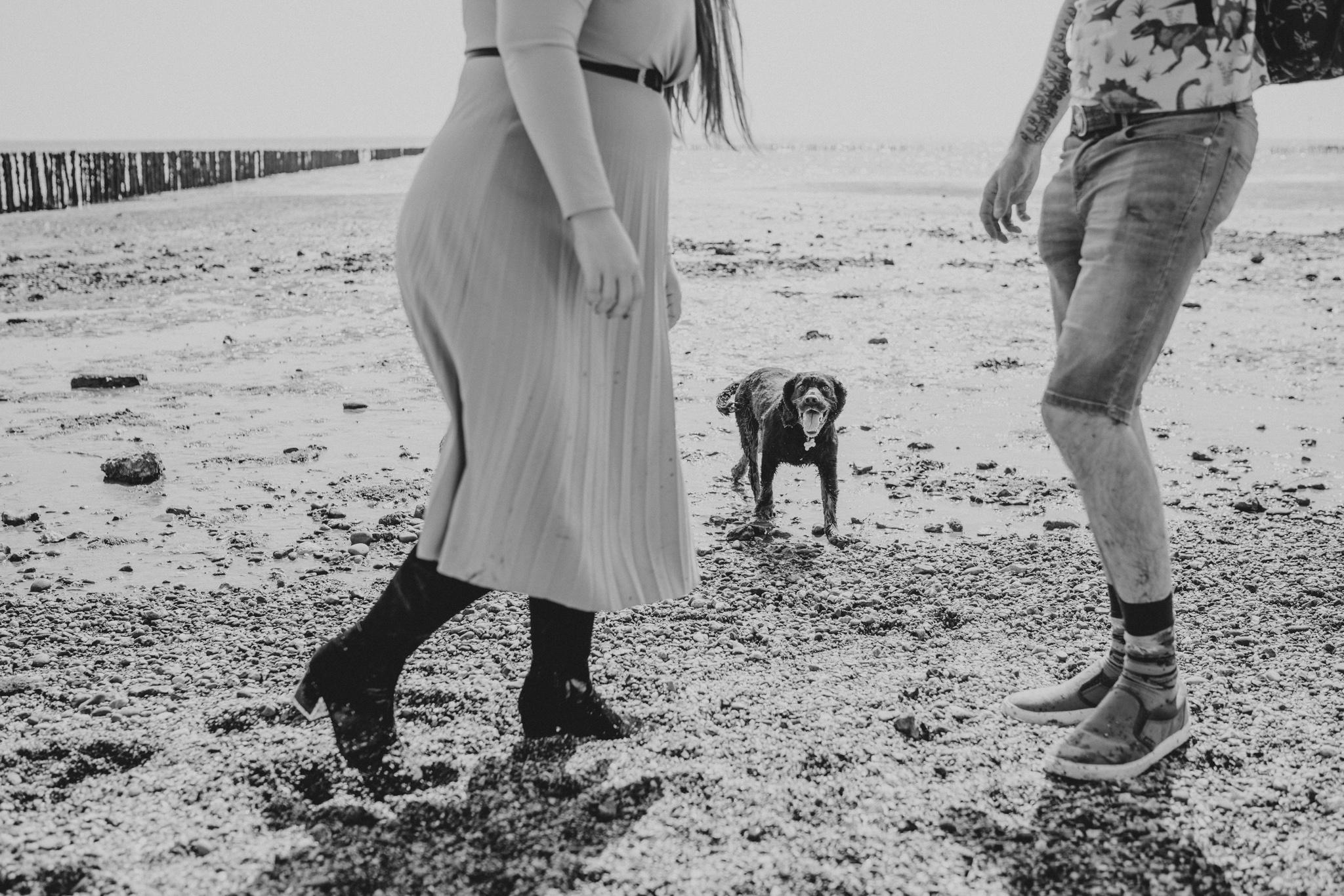 hayley-sam-cudmore-grove-pre-wedding-engagement-session-grace-elizabeth-colchester-essex-alternative-wedding-lifestyle-photographer-essex-suffolk-norfolk-devon (39 of 56).jpg