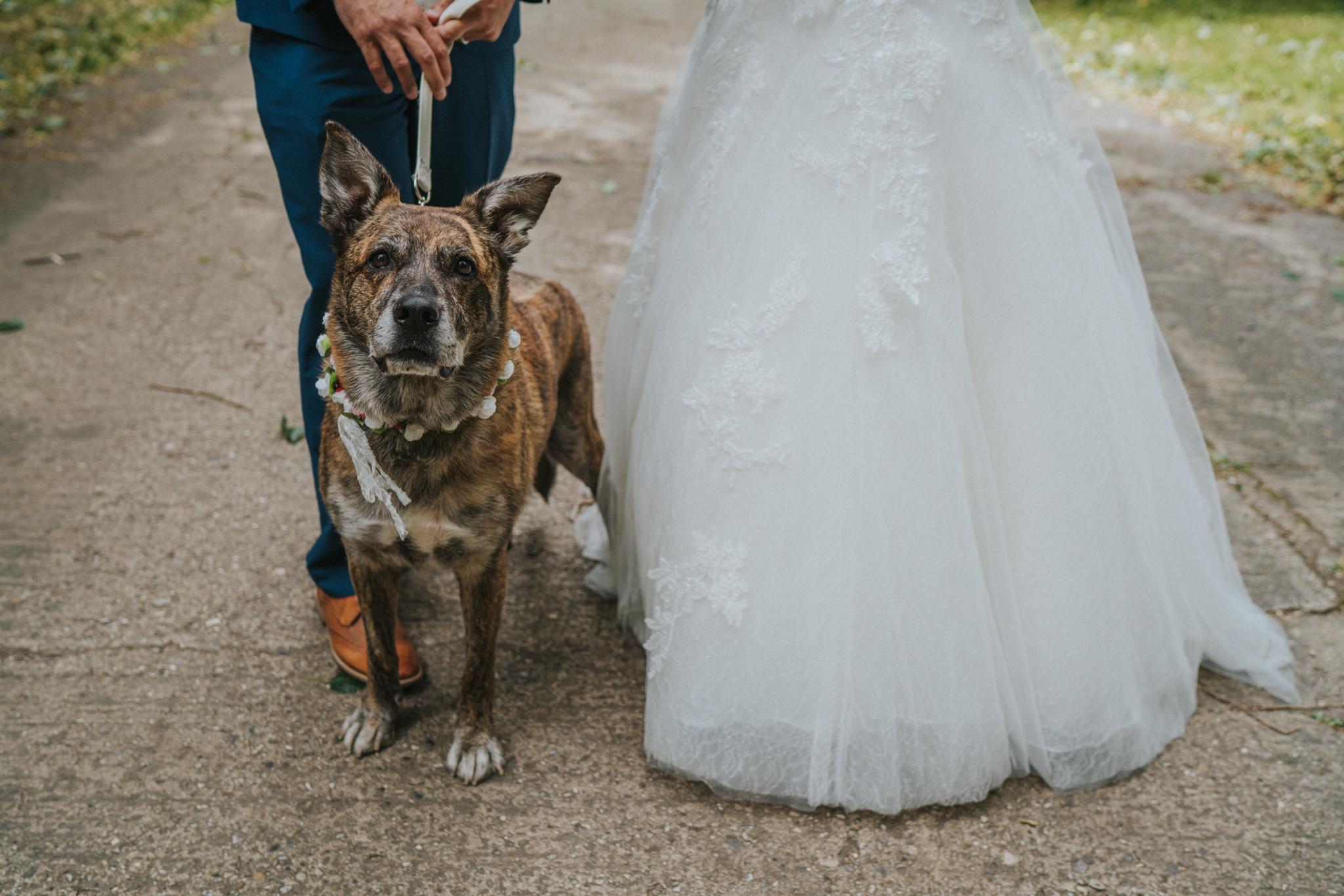 karen-tony-blackthorpe-barn-diy-wedding-grace-elizabeth-colchester-essex-alternative-wedding-lifestyle-photographer-essex-suffolk-norfolk-devon (24 of 35).jpg